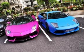 Picture beauty, supercars, lamborghini murcielago lp640, baby, Lamborghini LP700-4 Aventador