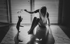 Picture cat, girl, light, sprig, room, the game, shadows, monochrome