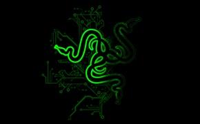 Picture green, green, black, logo, black, razer