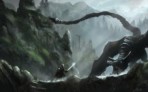 Wallpaper forest, mountains, rocks, dragon, Skyrim