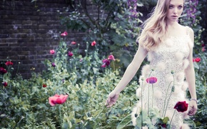 Picture girl, flowers, Maki, actress, blonde, celebrity, amanda seyfried