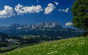 Picture mountains, tree, Austria, Alps, meadow, panorama, Austria, Alps, mountain Wilder Kaiser, Wilder Kaiser