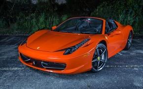 Picture Orange, Ferrari, Ferrari, Orange, 458, Italia, Spider, Supercar