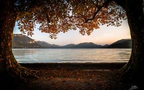 Wallpaper autumn, trees, mountains, lake