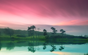 Wallpaper the sky, nature, green, river, shore, pink