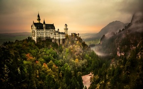 Picture forest, the sky, mountains, castle, Neuschwanstein, Bayern, Germany, trees