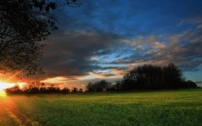 Wallpaper sunrise, night, field, forest