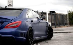 Picture CLS, Tuning, Mercedes, Mercedes, Buffalo, Wald, Black Bison