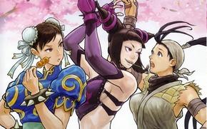 Picture fighter, street, chun li, ibuki, juri