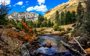 Picture autumn, the sky, clouds, trees, mountains, river, snag