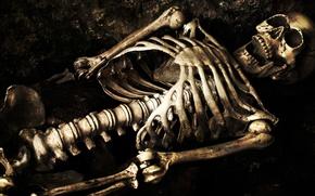 Picture grave, bones, skeleton