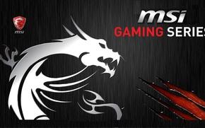 Wallpaper iron, Gaming, MSI