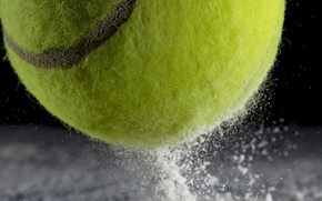Picture macro, sport, the ball