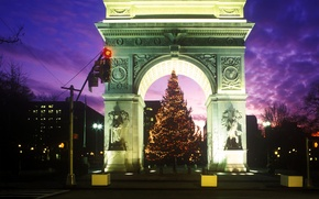 Picture night, tree, arch, Washington Square Park