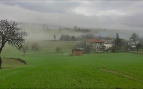 Picture grass, trees, fog, house, morning, Italy, Campagna