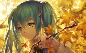 Picture autumn, music, anime, art, girl, hatsune miku, Vocaloid