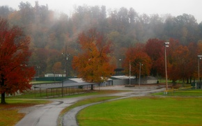 Picture Road, Fog, Autumn, Trees, Rain, Fall, Autumn, Rain, Road, Fog, Trees