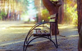 Picture autumn, bench, Park