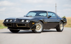 Picture Black, Pontiac, 1979, Trans