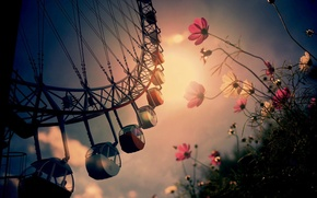 Picture flowers, the city, carousel