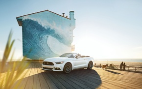 Picture car, dog, mustang, convertible, ford