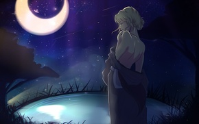 Picture the sky, girl, stars, night, the moon, back, anime, Shiori