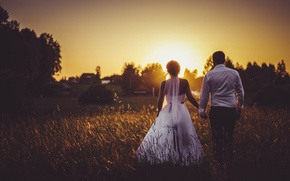 Picture field, sunset, wedding