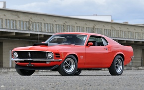 Picture Mustang, Boss, 429