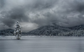 Picture winter, the sky, clouds, mountains, lake, tree