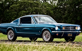 Picture Mustang, Ford, Mustang, Ford, 1965, Fastback