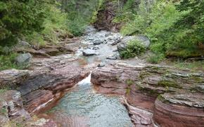 Picture Alberta, Canada, Water, Stream, Waterton, Waterton National Park