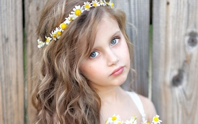 Picture look, child, chamomile, girl, girls, Little, Camomiles