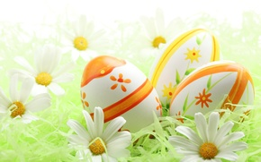 Wallpaper holiday, chamomile, eggs, Easter