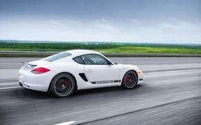 Picture Porsche, Cayman, white, road, rear