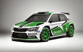 Picture WRC, Rally, Skoda, Fabia