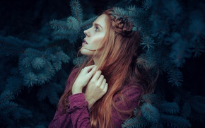 Picture face, background, tree, model, hair, cutie