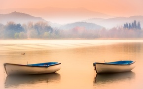 Picture the sky, mountains, fog, lake, boats, duck
