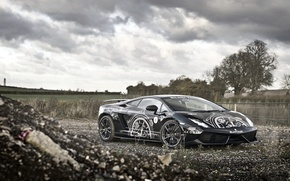 Picture Lamborghini, Superleggera, Gallardo, Black