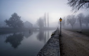 Picture the city, fog, street