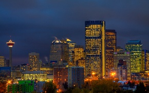Picture the sky, trees, night, the city, lights, building, tower, skyscrapers, lighting, Canada, lights, blue, Calgary, …