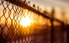 Picture the sun, macro, background, mesh, widescreen, Wallpaper, the fence, blur, fence, the fence, day, wallpaper, …