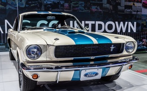 Picture Shelby, Ford Mustang, muscle car, 1966, Muscle car, GT350