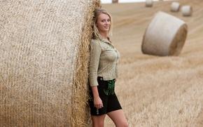 Picture field, girl, nature, model, hair, blonde, hay, Carisha