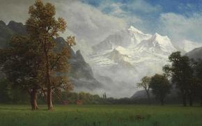 Wallpaper picture, mountains, Virgin, nature, Albert Bierstadt, trees, landscape