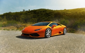 Picture LP640-4, Lamborghini, Diamond, Edition, Sun, Orange, Exotic, Front, Supercars, Huracan