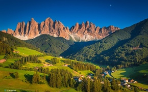 Picture forest, trees, landscape, mountains, Alps