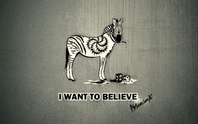 Wallpaper I want to believe, Zebra