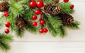 Picture branches, berries, background, holiday, New year, needles, bumps