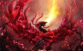 Picture girl, fire, magic, dragon, anime, art, Yu-Gi-Oh, of ken003, izayoi aki, black rose dragon