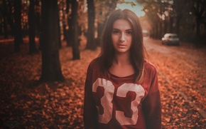 Picture autumn, look, foliage, lips, beauty, photographer, face, Andrew Krymowski